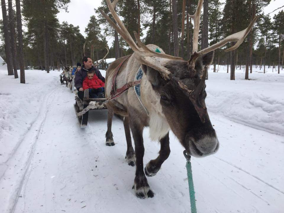 Lapland 2017 Day Three Blog